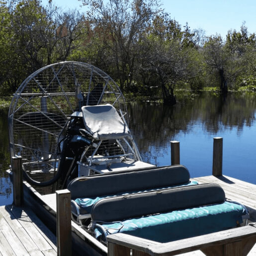 coupon for airboats and alligators